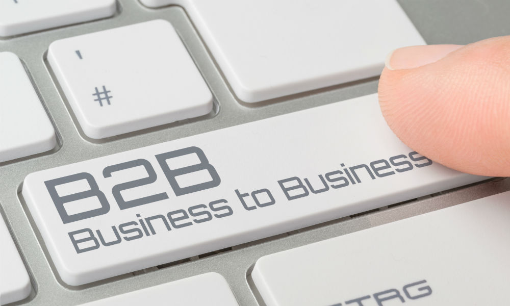 Bussiness to Business (B2B)